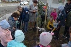 Jakub i Karol podlewają nasze drzewko.