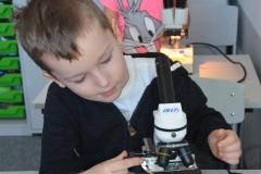 Oskar i Liwia przy mikroskopach.
