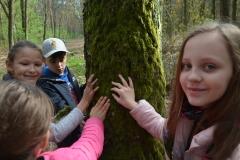 Co wskazuje nam mech po jednej stronie drzewa?
