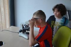 Praca przy mikoroskopie.