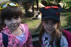 Lenka i Pola obserwują świnkę morską.