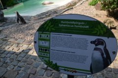 Tabliczki z informacjami o zwierzętach są w języku niemieckim i polskim.