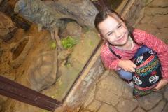 Jaki wielki żółw - Lenka podziwiała go przez szybę.