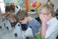 Świat w mikroskopie jest baaaaaardzo ciekawy.