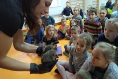 Mały jeżyk z wizytą w LEGATO.