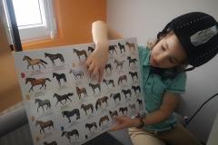 Laura i jej pasja konie.